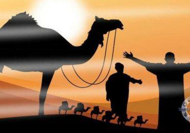 TEFEKKÜR PENCERESİ 12 : Peygamberlerin Gönderiliş Hikmetleri