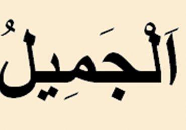 ALLAH'IN İLÂHİ CEMALİNİN GÖRÜLMESİ