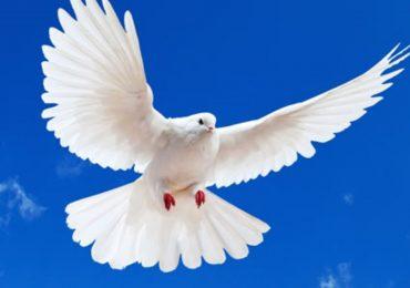 HAZRET-İ İSA ALEYHİSSELAMIN DURUMU
